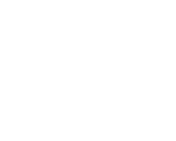IBRO Workshop